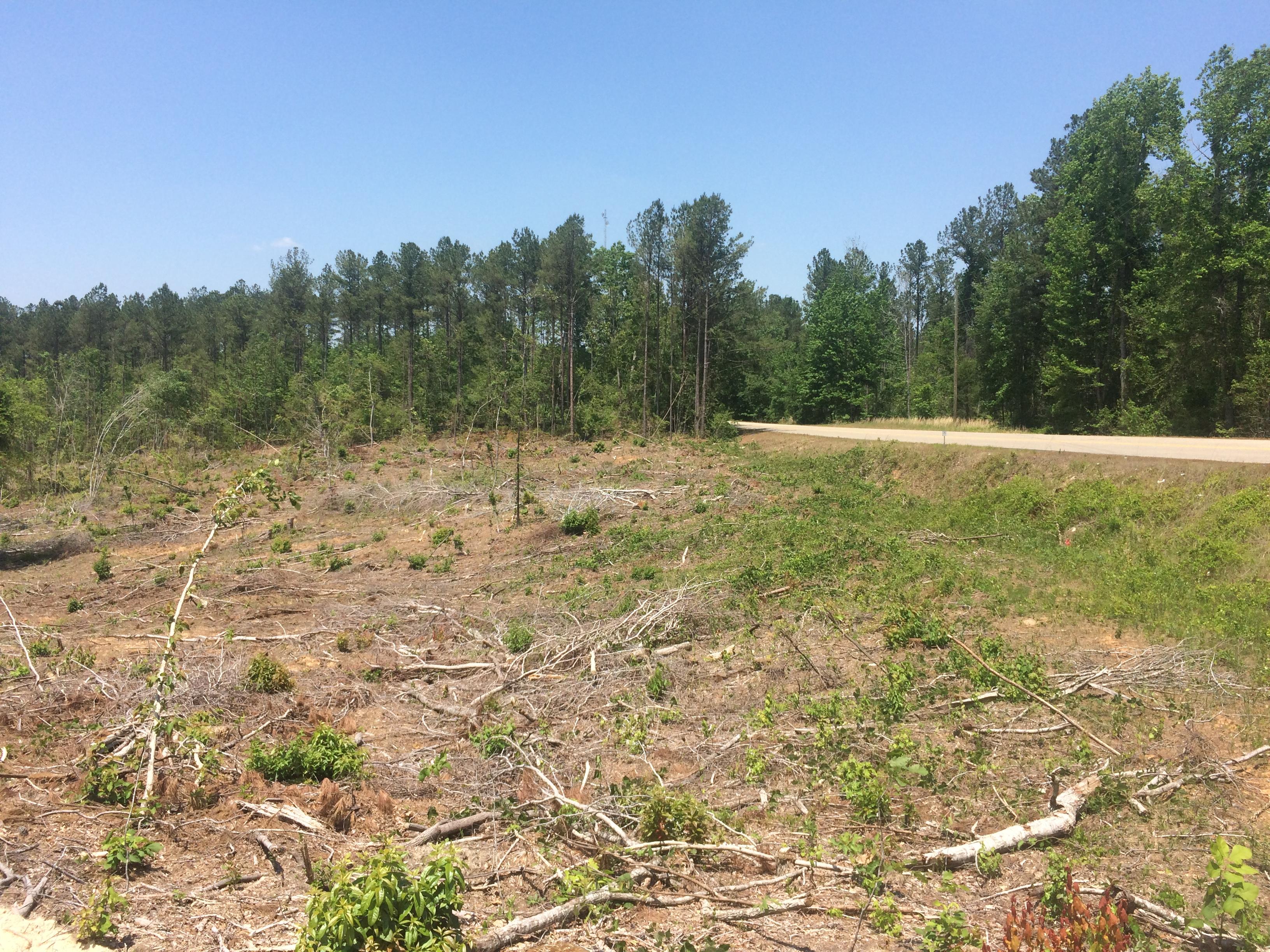 Alabama tuscaloosa county duncanville - Tuscaloosa County Mormon Road 71 Acres Under Contract